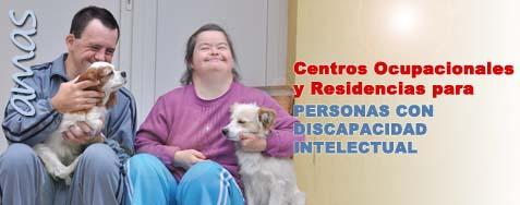 AMAS agencia madrileña atencion social